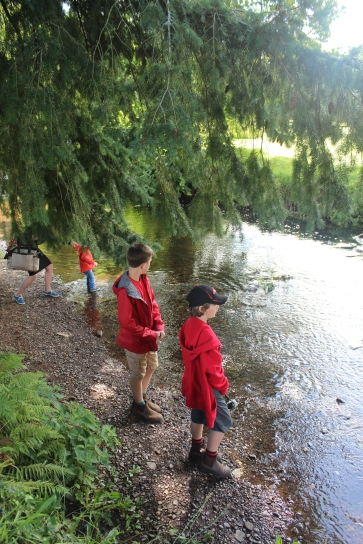 Throwing rocks and skipping stones.