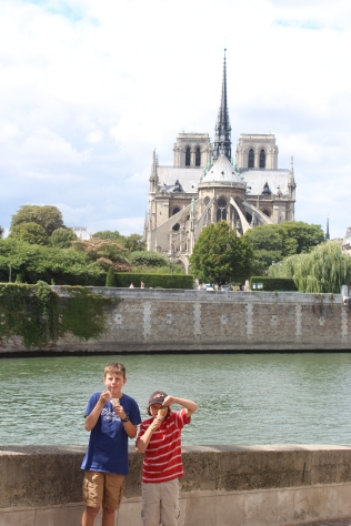 Crazy cats (Notre Dame in the background).