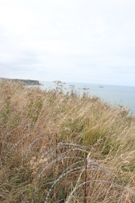 Some barbed wire at the top of the cliffs overlooking Arromanches.